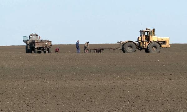 Власти Свердловской области возвратят всельхозоборот заброшенные земли