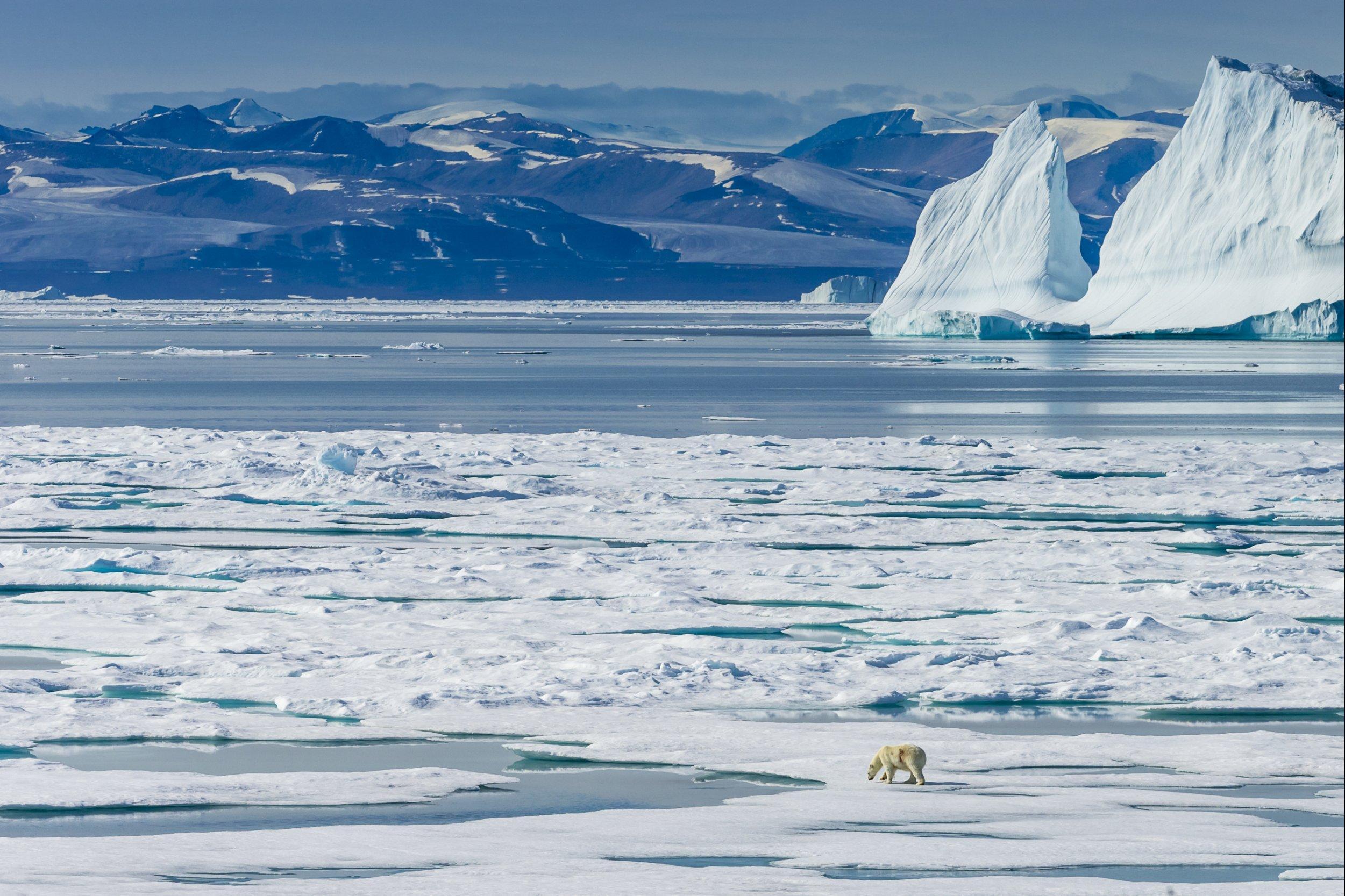 природа северного полюса фото включить его