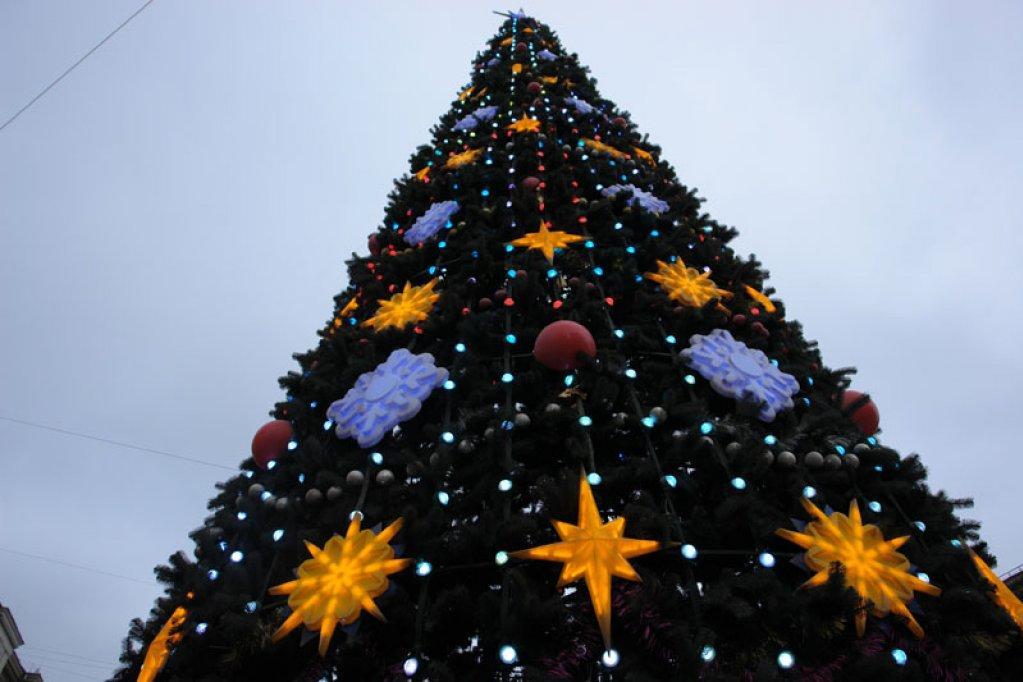 Власти Екатеринбурга истратят нановогоднюю елку 3,5 млн руб.