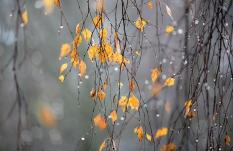 Зима близко: на Урале минусовая температура и мокрый снег