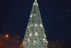 В Екатеринбург прибыла главная новогодняя ель города