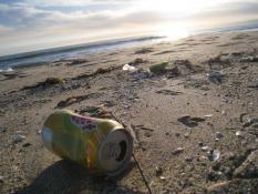 Ростех планирует превращать в электроэнергию мусор с российских курортов