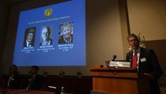 Нобелевскую премию присудили за внутриклеточные часы