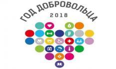 Свердловских волонтеров наградили в Москве