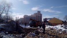 Градозащитники сообщили о незаконной вырубке деревьев в усадьбе Первушиных
