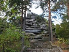 конкурс обустройство Шарташского лесопарка