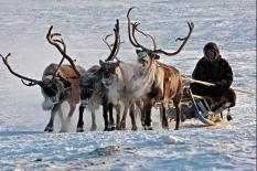 На Ямале издали национальный календарь