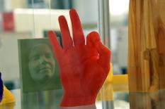 Ученые обнаружили у человека новый орган