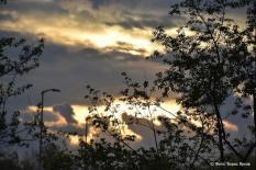 Свердловчан ждет дождливый конец недели