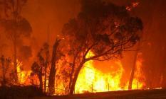 Урал охватили множественные пожары в лесах и населённых пунктах
