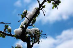 На Урале весна задержится всего на день