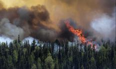 Продолжают гореть леса в Свердловской области