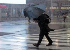 К выходным в Свердловской области ожидаются сильные дожди и порывистый ветер