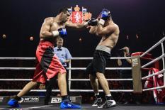 Олимпийский чемпион Тищенко сразится на Всемирном боксерском форуме в Екатеринбурге