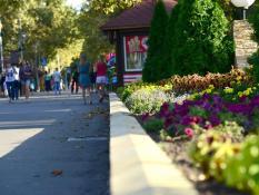 С 2018 года благоустройство городов в России должны одобрить граждане