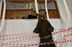 Особый режим в Свердловской области продлен еще на неделю