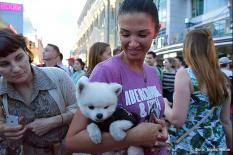 В России животным разрешили самостоятельно ездить на поездах