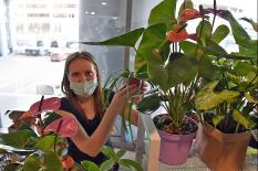 На Урале прошел первый фестиваль домашних растений (фото)