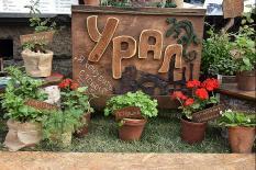 «Дышащие» горшки и зеленые крыши: в Екатеринбурге стартовал фестиваль ландшафтного искусства «Атмосфера» (фото)