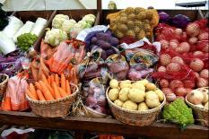 На Урале прошел Всероссийский день картофельного поля (фото)