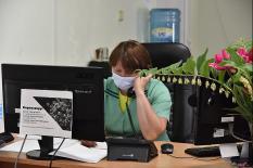 На Среднем Урале продолжает снижаться количество новых случаев коронавируса
