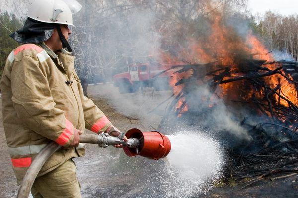 На охрану уральских лесов от пожаров дополнительно выделили 133 млн. рублей