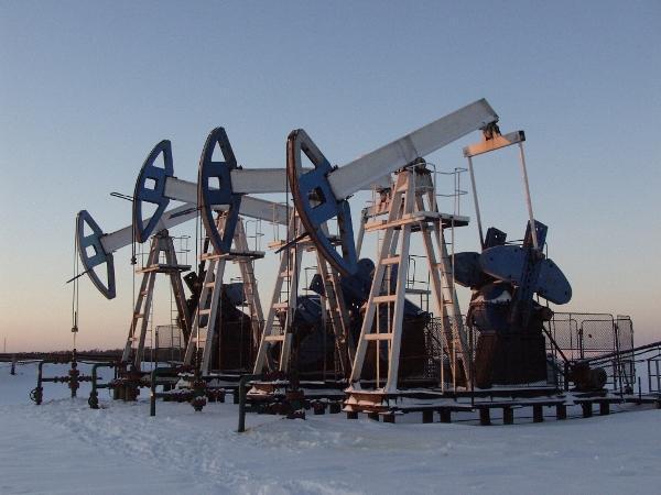 контракт сургутнефтегаз на 99 лет на добычу нефти